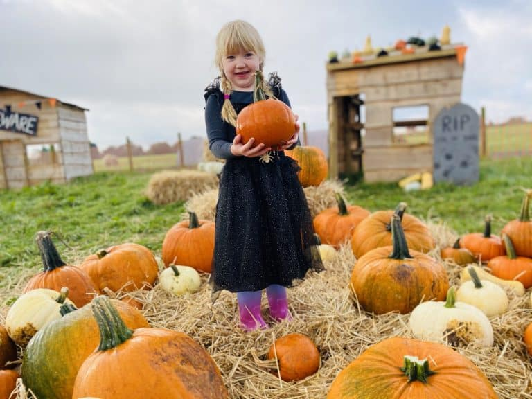 A lttle girl with blond hair and black dress holding a pumpkin surrounded by pumpkins at Cockfield Farm